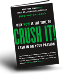 Free Business eBooks: Crush It by Gary Vaynerchuk PDF download