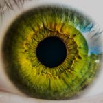 Why Eye Contact Is Important In Public Speaking blog image